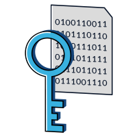 Icons- Key overlaying 1s and 0s document